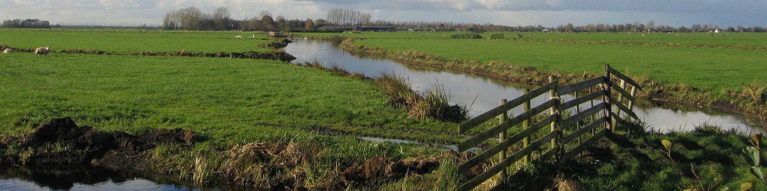 PvdA-GroenLinks-LokaalSociaal De Ronde Venen